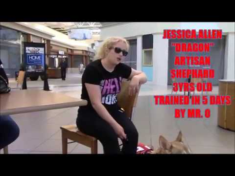 mr-o's-ptsd-testamonials-(ptsd-dog-training)