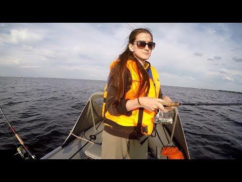 Ловля судака летом на финском заливе