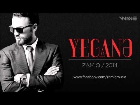 Zamiq and Yegane 2014