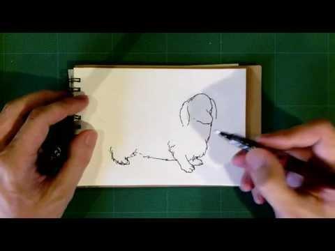 2動物画ダックスフンドの絵を描きました How To Sketch Youtube