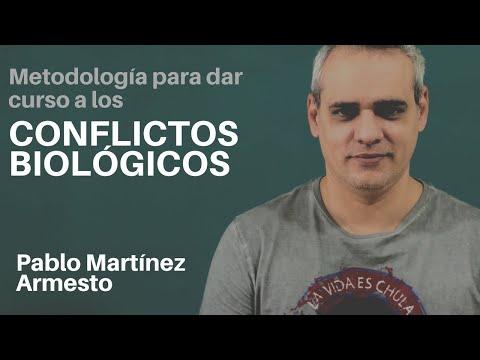 Pablo Martínez Armesto - Cerebro Global, BioEstructura 4 (Parte 1)