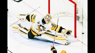 Best NHL Saves of 2017