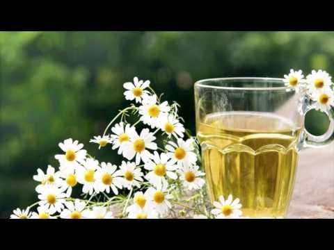 Сколько можно пить зеленого чая граффити кружка чая Чай и кофе