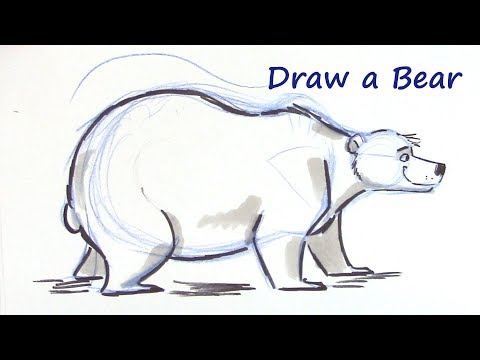 How To Draw A Cartoon Bear - You Can Do It!