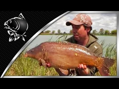 CARP FISHING TIPS - DAY TICKET SUCCESS WITH RICH WILBY - EN ITA NL DE PL DE SUBTITLES - NASH TACKLE