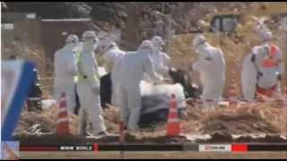 Fukushima 4 Years On (update 3/10/15)