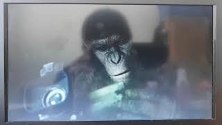 Dawn Of The Planet Of The Apes - Caesar's childhood - James Franco cameo