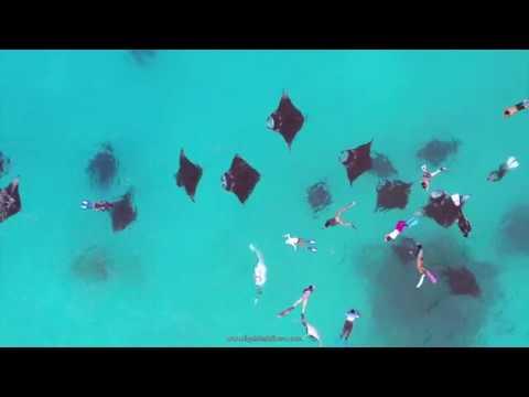 diving-in-dharavandhoo