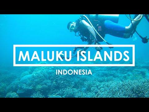 #2 Maluku Islands - Indonesia.