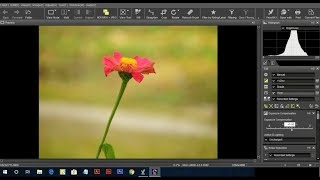 How To Edit Nikon RAW files in Capture NXD all Nikon Coolpix P1000,B700 Tutorial 2018