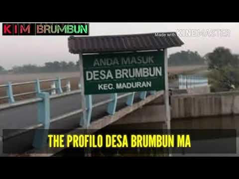 POTRET DESA BRUMBUN MADURAN LAMONGAN