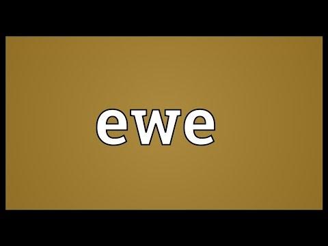 Ewe Meaning - YouTube