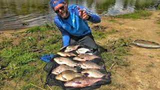 Фидерная ловля на реке Припять Ловля крупного ЛЕЩА и КАРАСЯ Рыбалка в Беларуси 2020