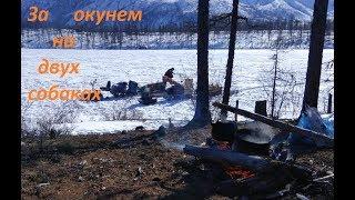 Рыбалка окуня  на мотособаках март 2019