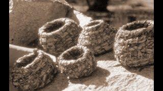 Sukuin Shkuin. Historias de creación de los pa ipai y kumiai de Baja California.