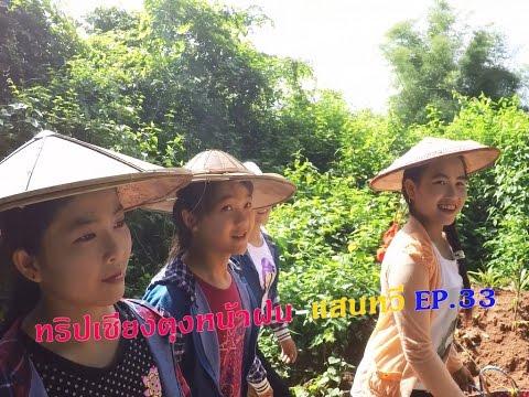 เที่ยวเชียงตุงหน้าฝน-แสนหวี EP.33 สาวแสนหวีพาเข้าป่าขึ้นเขาหาเห็ดหาหน่อตามธรรมชาติ Hseni Forrest