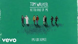 Tom Walker - Better Half of Me (MJ Cole Remix) [Audio]
