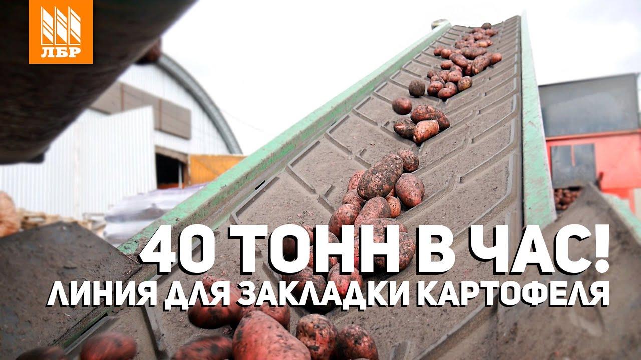 Конвейер для картофеля КТ 2