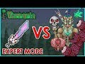 Terraria Meowmere Vs All Bosses Expert Mode Biron mp3