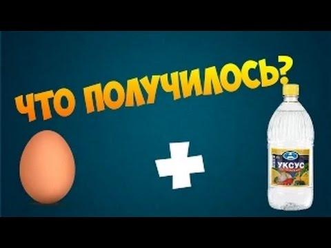 Как сделать светящейся яйцо 89