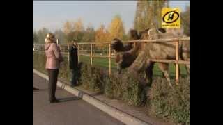 В минском зоопарке - новые экзотические животные