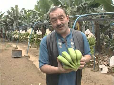 В поисках приключений - Эквадор (часть 1)