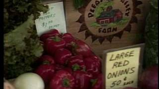 Horticultural Marketing - Pleasant Valley Farm, Argyle, NY