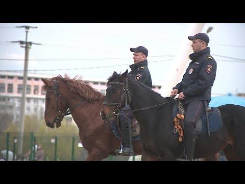 Конная полиция заступила на охрану общественного порядка в Волжском