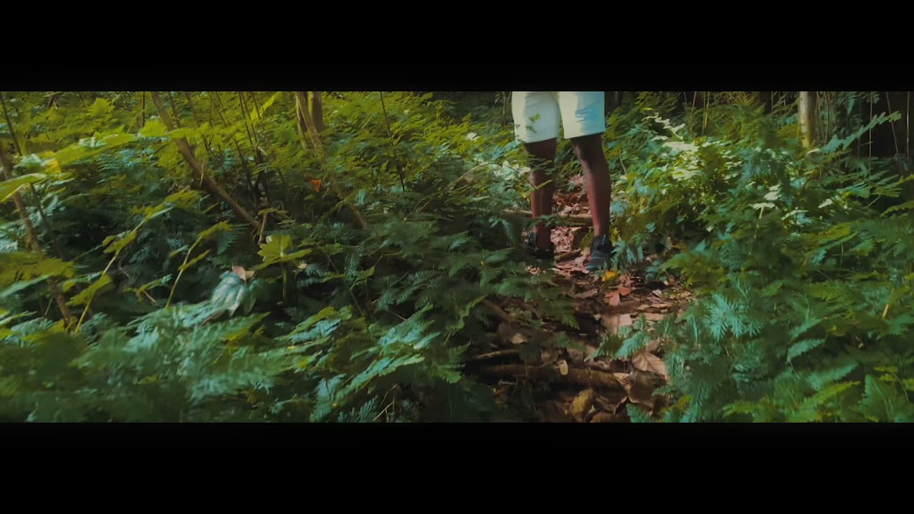 DOWNLOAD: P.B.B.N(official music video) Mp4 song