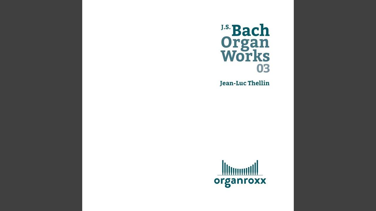 Praeludium und Fuge, D Major, BWV 532: I. Praeludium