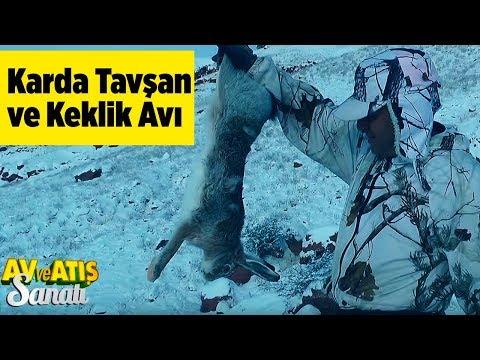 Karda Tavşan Ve Keklik Avı  Av Ve Atış Sanatı  Yaban Tv - Snow Rabbit And Partridge Hunting Turkey