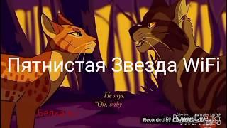 Коты Воители|Пятнистая Звезда|WiFi