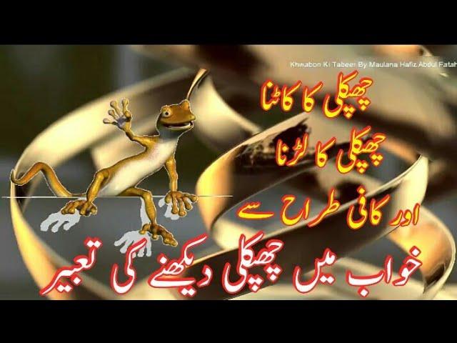 Khwab Mein Chipkali Dekhna || Lizard Dream Meaning || lizard in dream || meaning of dreams in islam