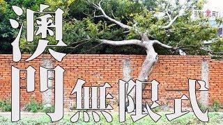 塔塔懷特遊世界。2017澳門食況Live Show,澳門無限式MV篇,塔塔懷特用Rap唱給你聽
