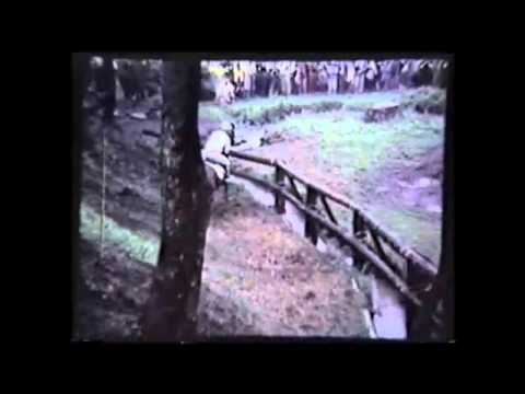 Eventing at the 1976 Olympic Games in Bromont