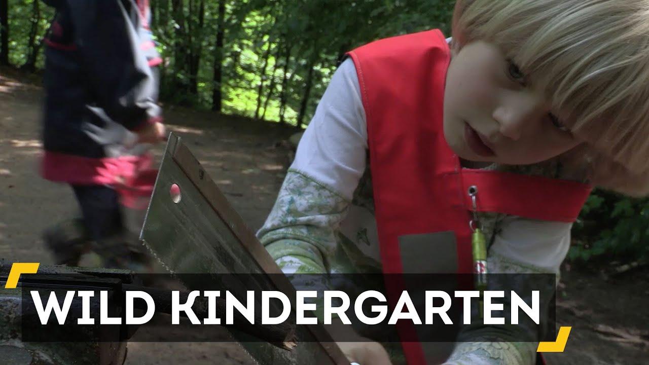 Kindergarten In The Wild