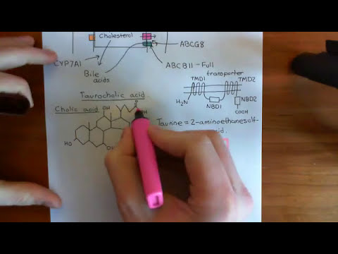 High Density Lipoprotein Part 8