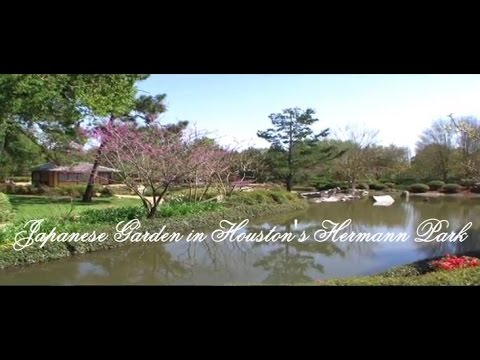Houston Videos   Japanese Garden In Hermann Park, Houston, Texas