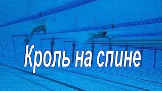 Кроль на спине. Комментарии подводной съёмки.