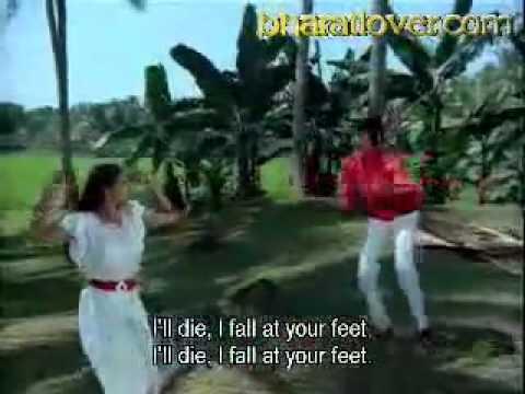 Dil Tote Tote Ho Gaya Lyrics   Bichhoo (2000) Songs Lyrics ...