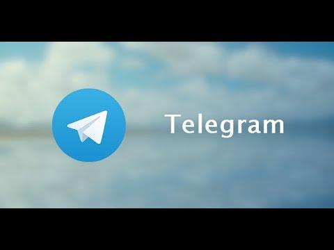 Как запустить бота в телеграмме