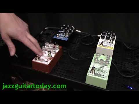 Jazz Guitar Today - Rose Quarter Guitar Festival - Matthews Effects