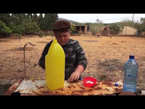 Trampa per a mosques - Uep IB3
