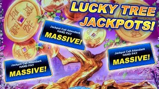 BIG BETS ON LUCKY TREE ★ HIGH LIMIT ★ HANDPAY JACKPOT! ➜ LIVE SLOT MACHINE PLAY