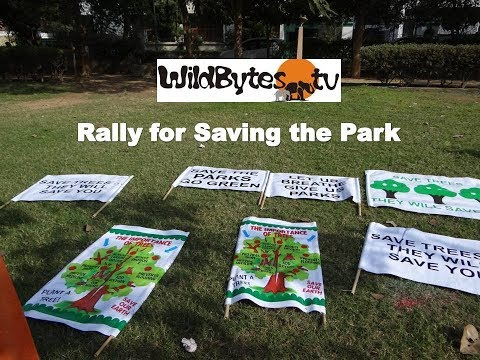 Rally for Saving the Park