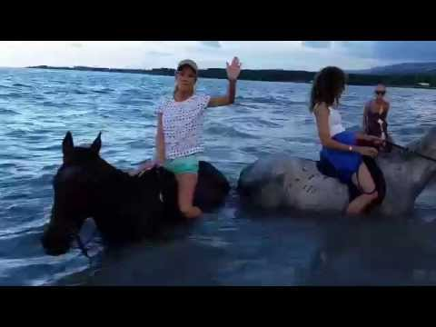 Horseback Riding on the Beach and into the Ocean