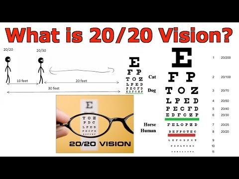What is 20/20 Vision?