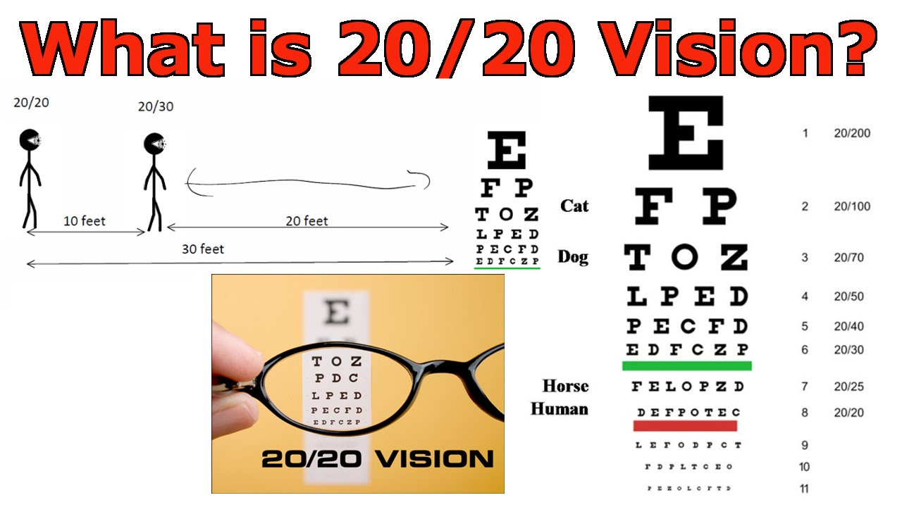 What is 2020 vision youtube nvjuhfo Image collections