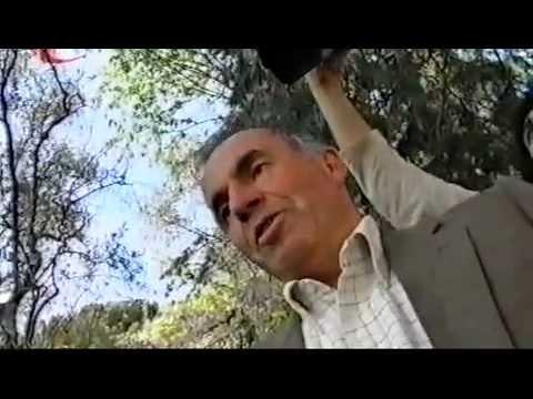 Schegge di utopia - Il cinema underground Italiano - Massimo Bacigalupo