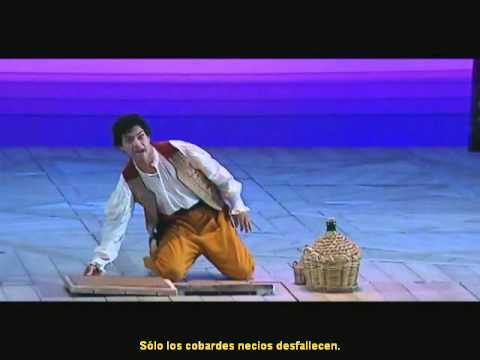 EL RAPTO EN EL SERRALLO de W.A.Mozart - Opera completa subtitulada en español